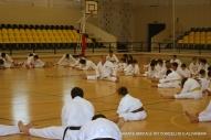 4º Meeting Técnico Amicale Karate Alcanena 2014 087